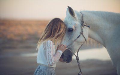 Equestrian Family Photo Shoot  Olympia, WA